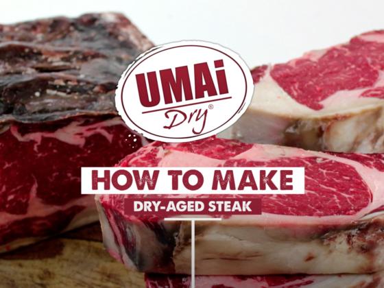 UMAi Dry Basics - Instrucciones (Español)