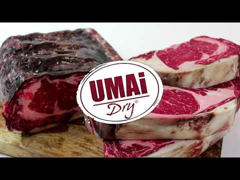 UMAi Dry Basics--English Instructions for Vacuum Sealer